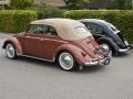 Two '58 beetles