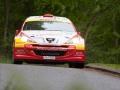Rally DM2 2012