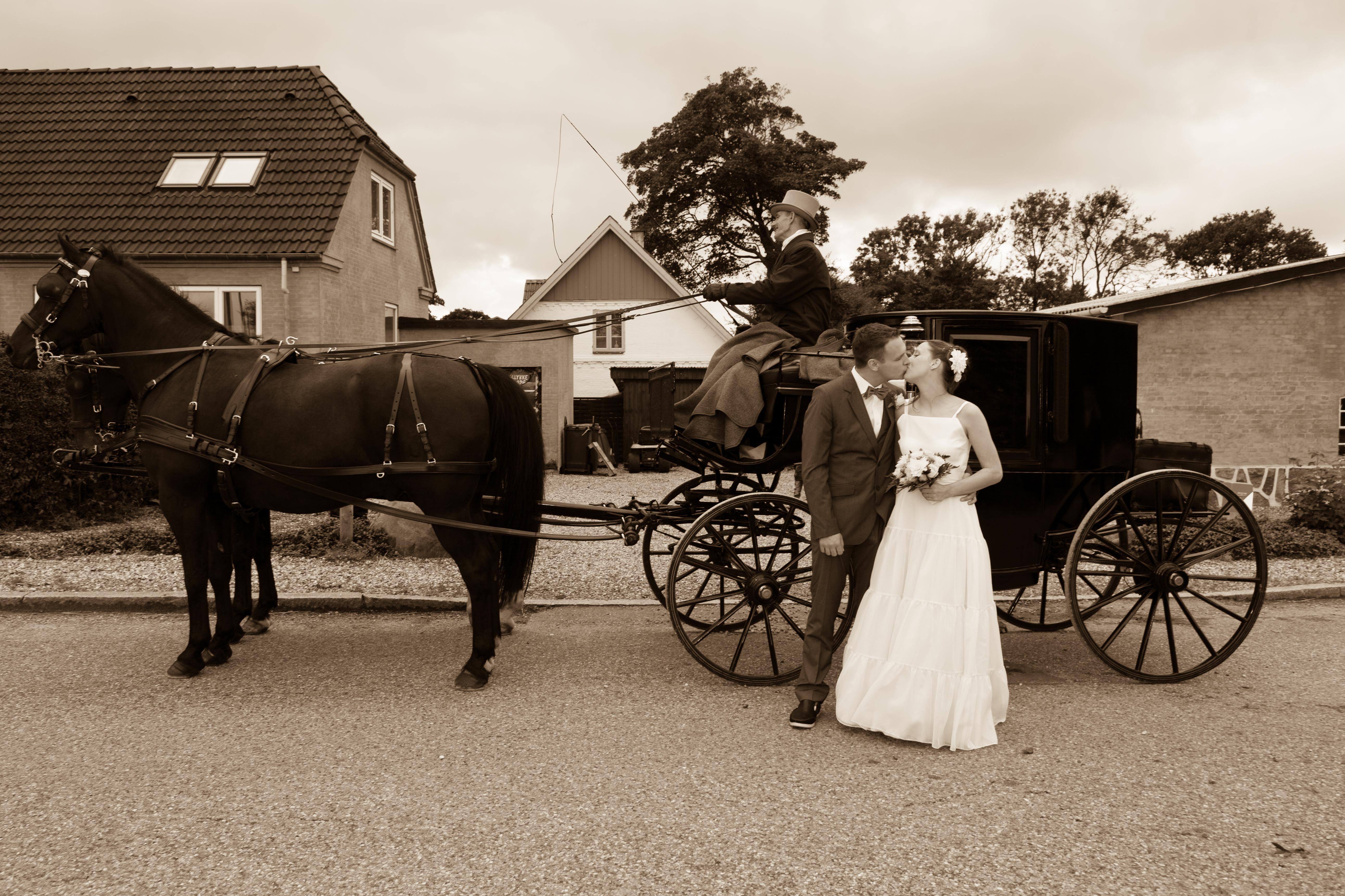 Wedding photo in Sepia